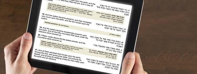 L'étude de la Torah
