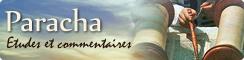 Paracha (Torah hebdomadaire)