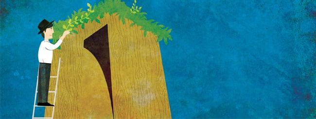 How to Build a Sukkah